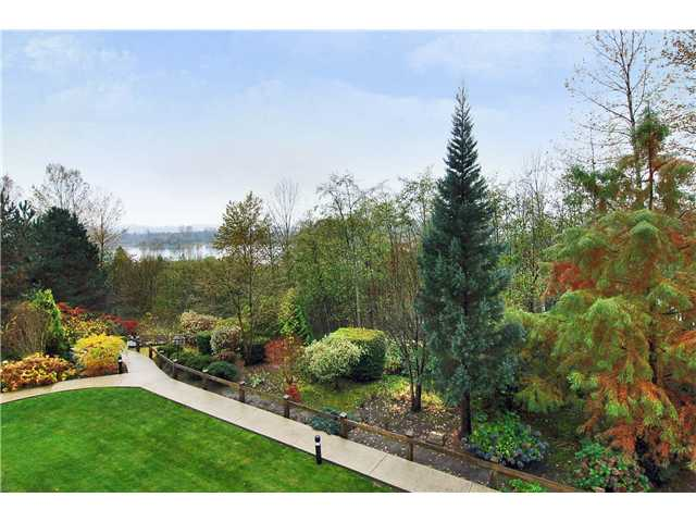 "Main Photo: 305 11609 227TH Street in Maple Ridge: East Central Condo for sale in ""EMERALD MANOR"" : MLS® # V892769"
