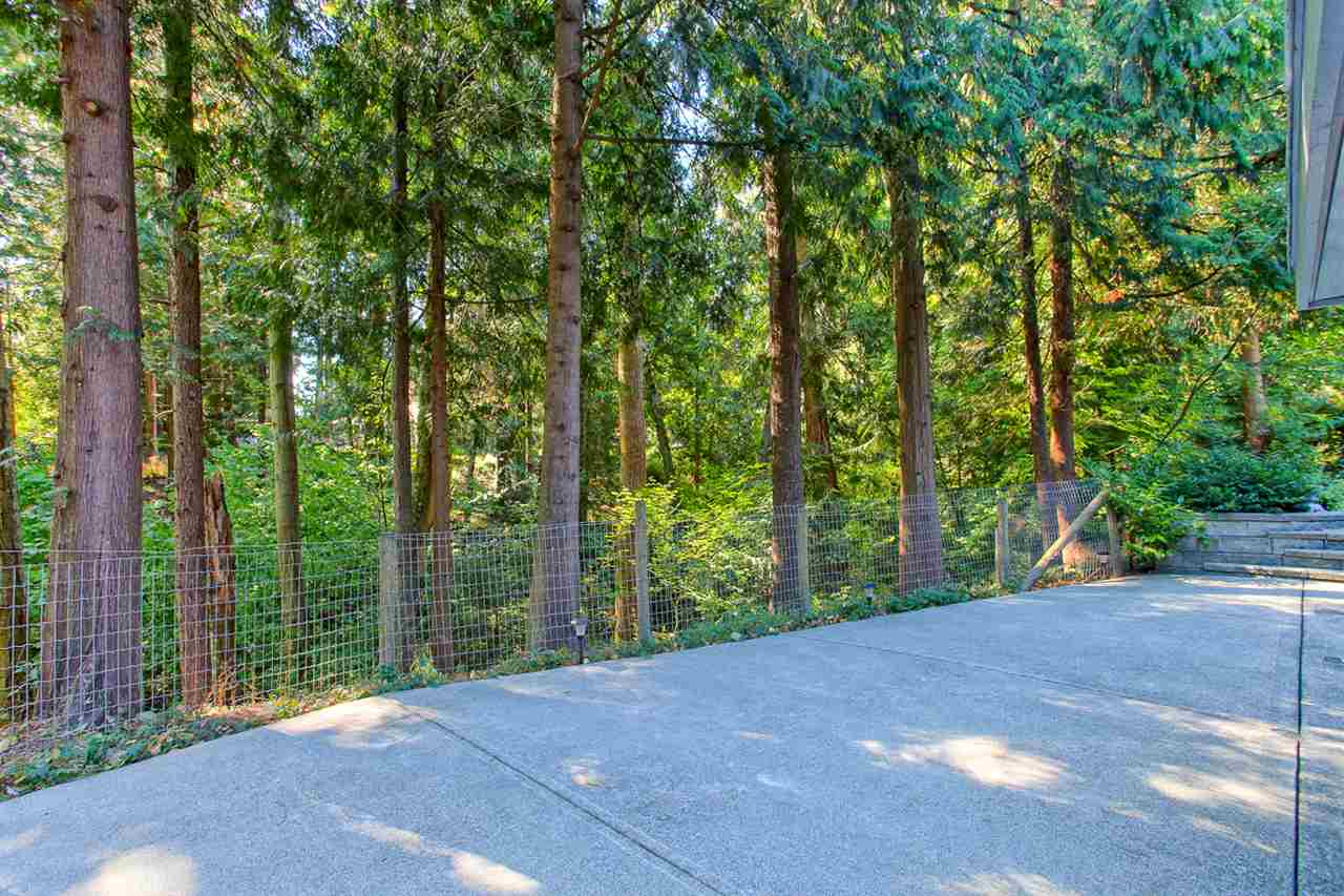 "Photo 19: 20180 41A Avenue in Langley: Brookswood Langley House for sale in ""Brookswood"" : MLS® # R2109407"