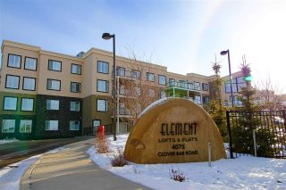 Main Photo: 110 4075 CLOVER BAR Road: Sherwood Park Condo for sale : MLS® # E4090078
