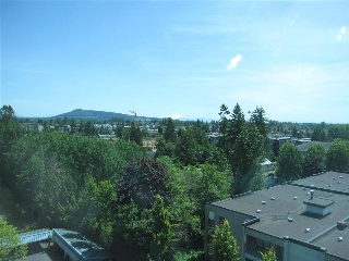 "Main Photo: 903 12148 224 Street in Maple Ridge: East Central Condo for sale in ""PANORAMA"" : MLS(r) # R2175565"