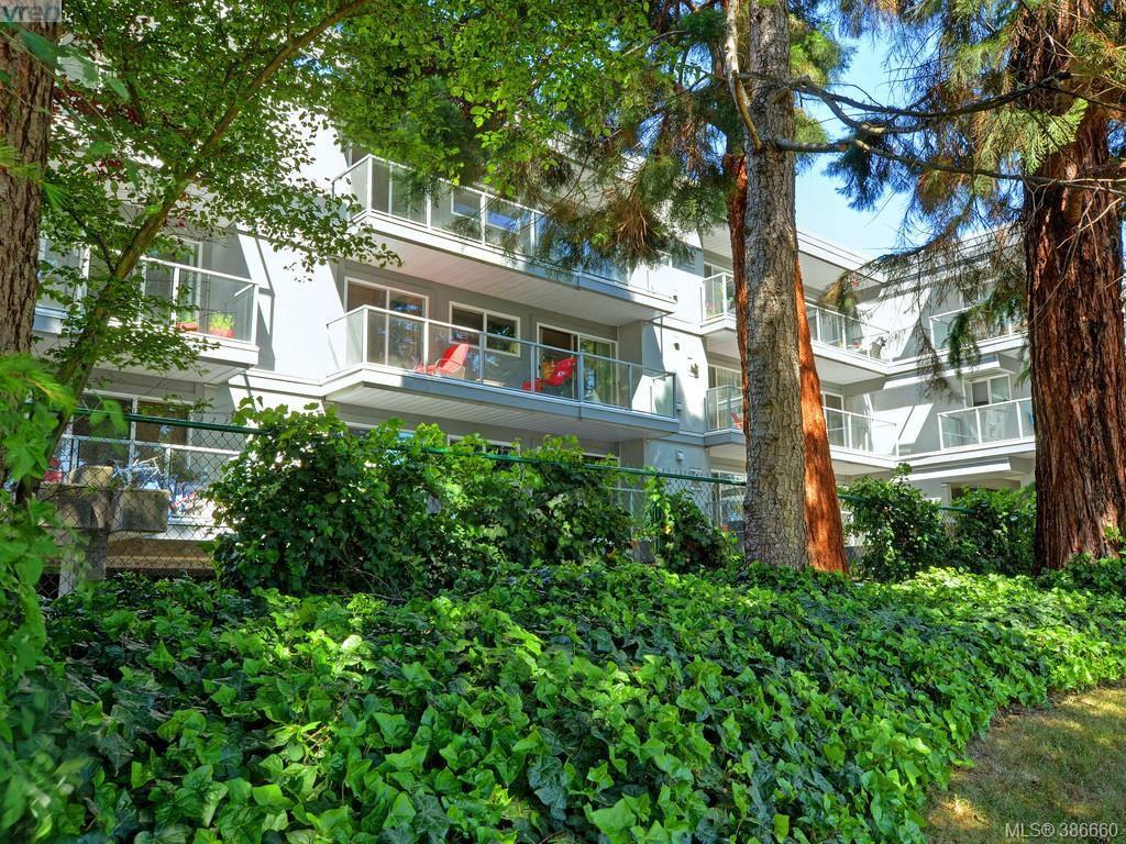 Main Photo: 307 2022 Foul Bay Road in VICTORIA: Vi Jubilee Condo Apartment for sale (Victoria)  : MLS® # 386660