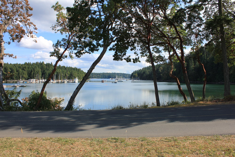 Photo 10: 68 Pilkey Point Road in Thetis Island: Beach Home for sale : MLS(r) # 303168