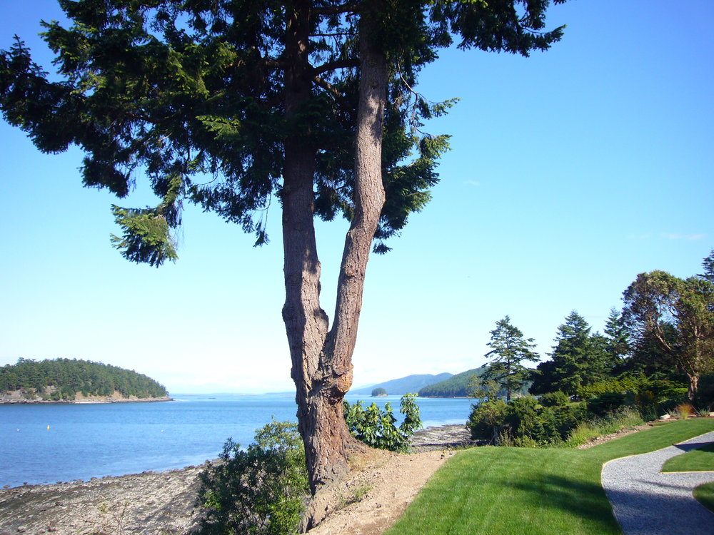 Photo 4: 494 Arbutus Drive in Mayne Island Resort  Beach Homes: Beach Home for sale