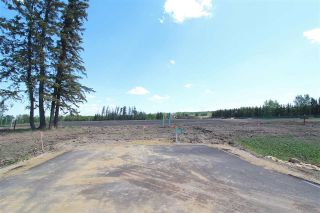 Main Photo: 5 - 53217 RR 263: Rural Parkland County Rural Land/Vacant Lot for sale : MLS®# E4114096