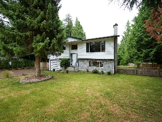 Main Photo: 4571 198 Street in Langley: Langley City House for sale : MLS(r) # R2079464