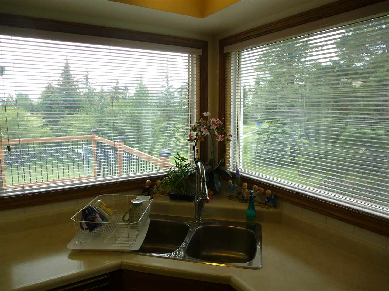 Photo 13: 315 ORMSBY Road in Edmonton: Zone 20 House for sale : MLS(r) # E4059577