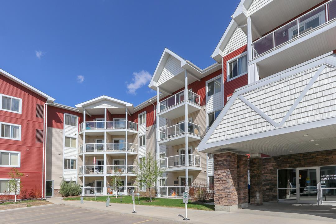 Main Photo: 214 2203 44 Avenue in Edmonton: Zone 30 Condo for sale : MLS®# E4110683