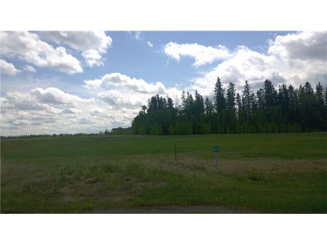 Photo 1: 33 26510 TWP RD 511 Road: Rural Parkland County Rural Land/Vacant Lot for sale : MLS® # E3376477
