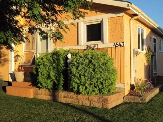 Main Photo: 4543 35 Avenue in Edmonton: Zone 29 House for sale : MLS(r) # E4055285