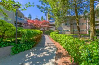 "Main Photo: 119 932 ROBINSON Street in Coquitlam: Coquitlam West Condo for sale in ""THE SHAUGHNESSY"" : MLS®# R2272367"