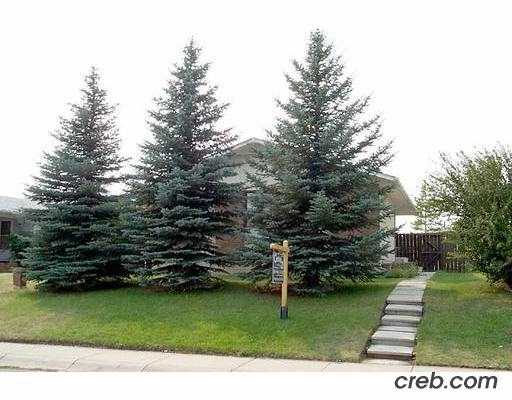 Main Photo:  in : Rundle Residential Detached Single Family for sale (Calgary)  : MLS® # C2182253