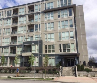 Main Photo: 382 4133 STOLBERG Street in Richmond: West Cambie Condo for sale : MLS(r) # R2176079