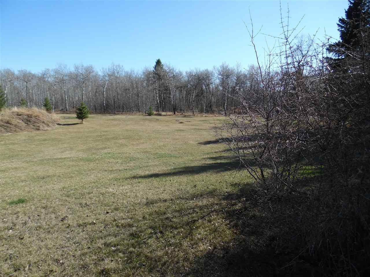 Nice Minburn lot of .347 acres or 15,130 sq ft which almost 3 times the size of most big city lots costing 10 x more!