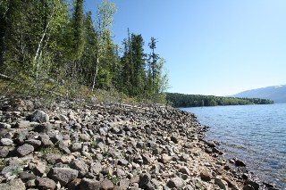 Main Photo: Lot 2 Bradley Road: Seymour Arm Land Only for sale (Shuswap)