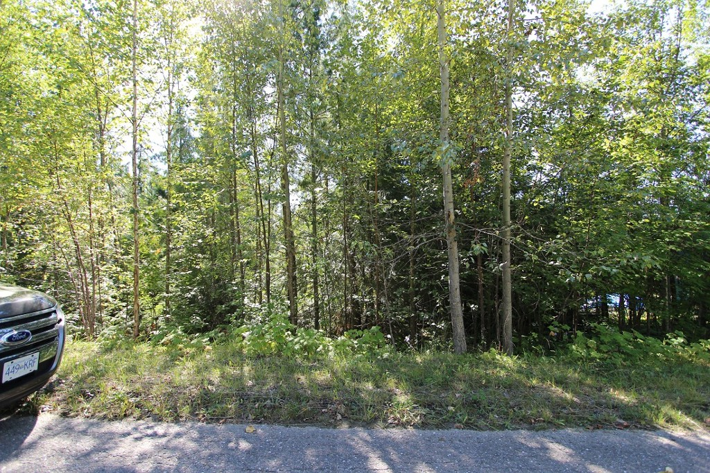 Main Photo: Lot 90 Birch Close: Land Only for sale : MLS®# 10071170