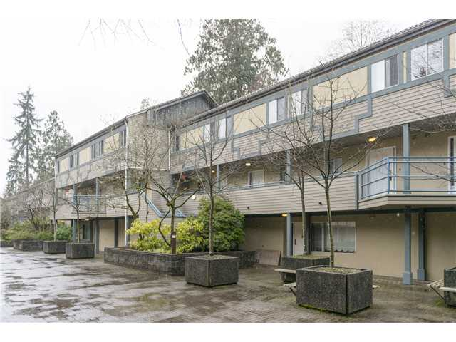 "Main Photo: 18 2978 WALTON Avenue in Coquitlam: Canyon Springs Townhouse for sale in ""CREEK TERRACE"" : MLS®# V1049837"