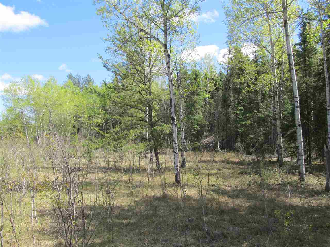 Photo 21: RR 225 North of Twp 590: Rural Thorhild County Rural Land/Vacant Lot for sale : MLS® # E4065164