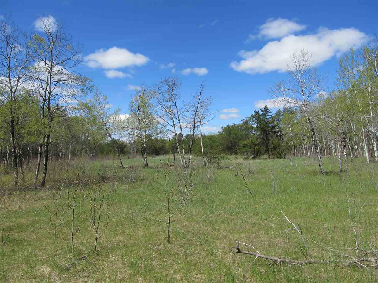 Photo 12: RR 225 North of Twp 590: Rural Thorhild County Rural Land/Vacant Lot for sale : MLS® # E4065164