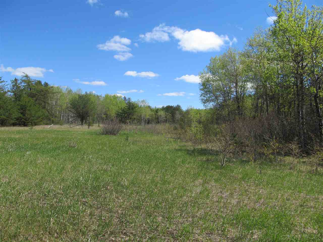 Photo 23: RR 225 North of Twp 590: Rural Thorhild County Rural Land/Vacant Lot for sale : MLS® # E4065164