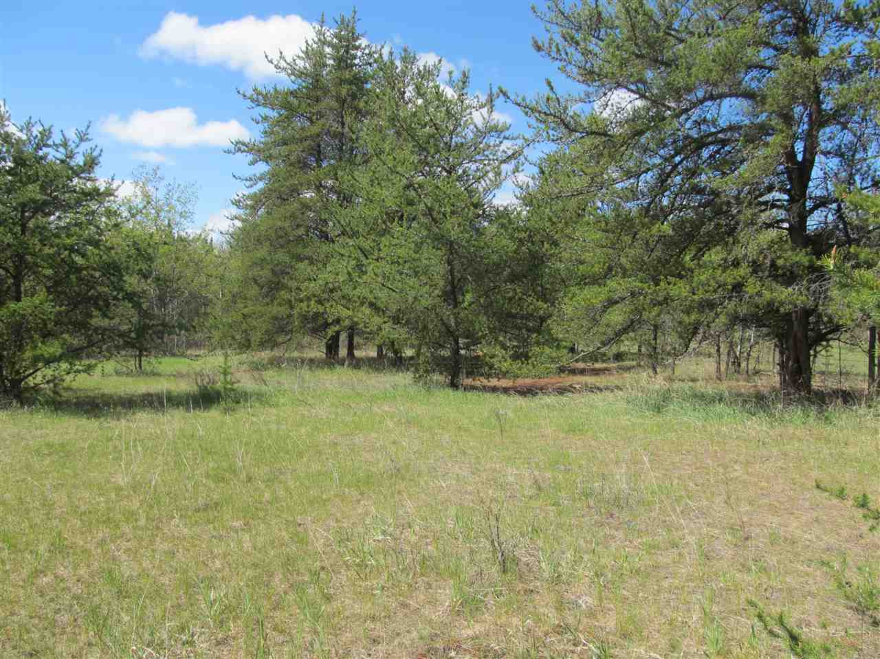 Photo 14: RR 225 North of Twp 590: Rural Thorhild County Rural Land/Vacant Lot for sale : MLS® # E4065164