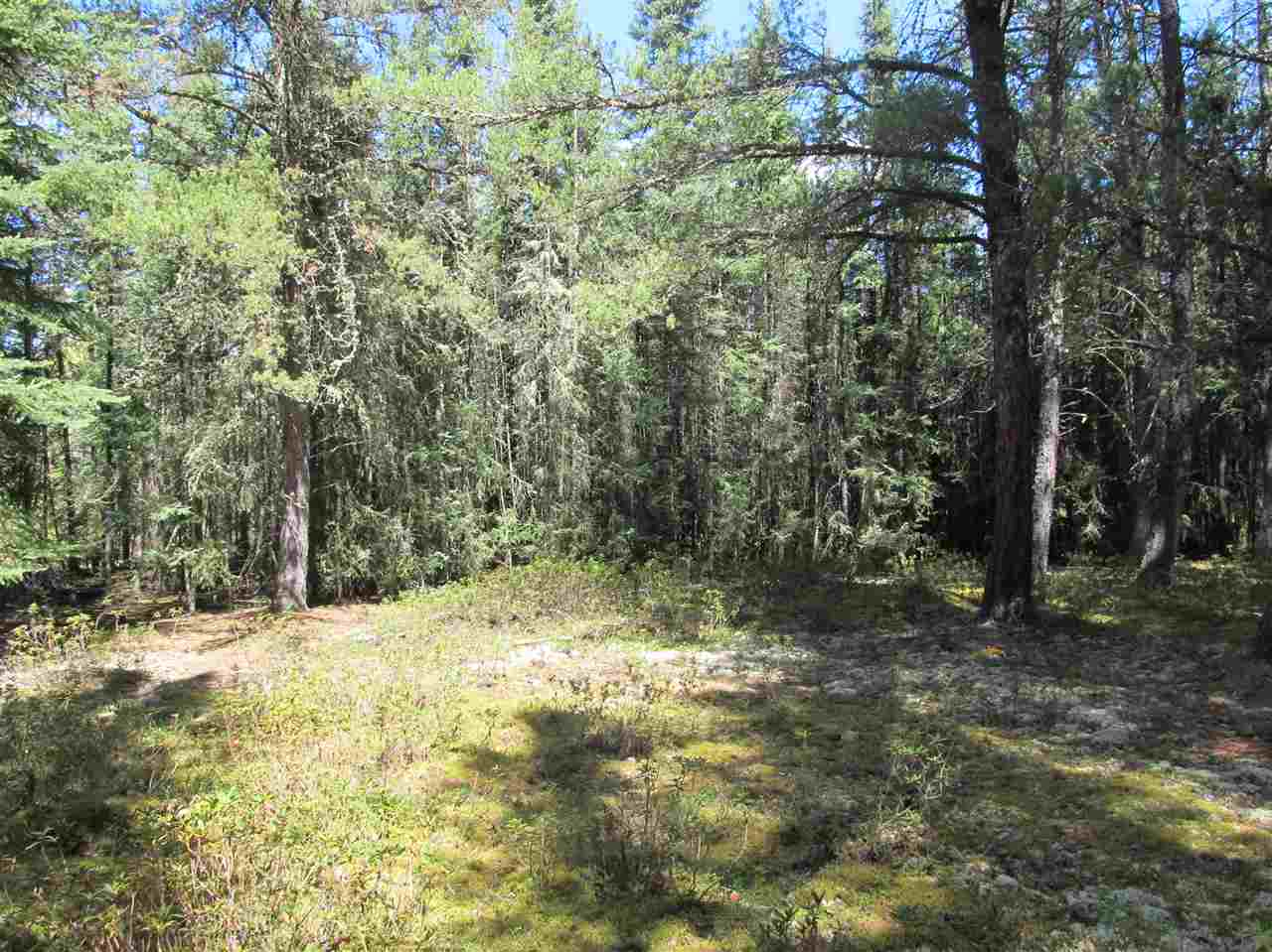 Photo 19: RR 225 North of Twp 590: Rural Thorhild County Rural Land/Vacant Lot for sale : MLS® # E4065164