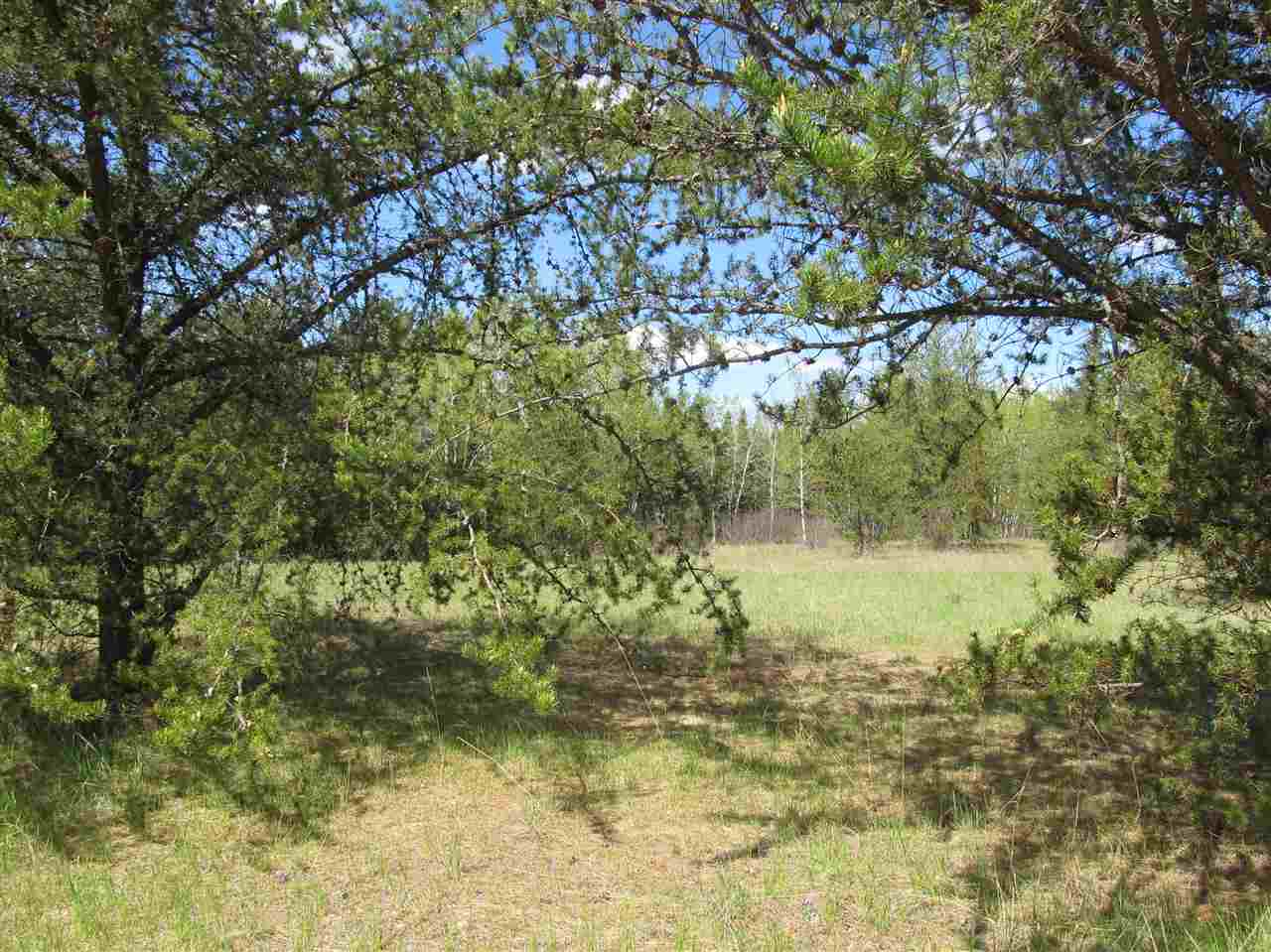 Photo 22: RR 225 North of Twp 590: Rural Thorhild County Rural Land/Vacant Lot for sale : MLS® # E4065164