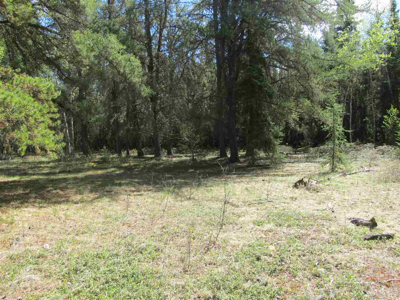 Photo 20: RR 225 North of Twp 590: Rural Thorhild County Rural Land/Vacant Lot for sale : MLS® # E4065164