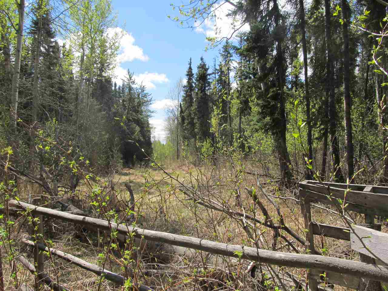 Photo 10: RR 225 North of Twp 590: Rural Thorhild County Rural Land/Vacant Lot for sale : MLS® # E4065164