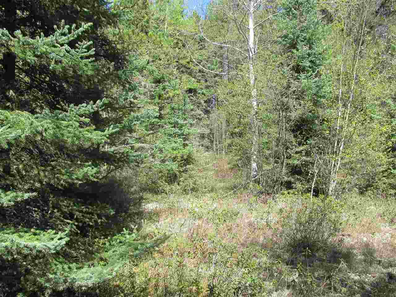 Photo 26: RR 225 North of Twp 590: Rural Thorhild County Rural Land/Vacant Lot for sale : MLS® # E4065164