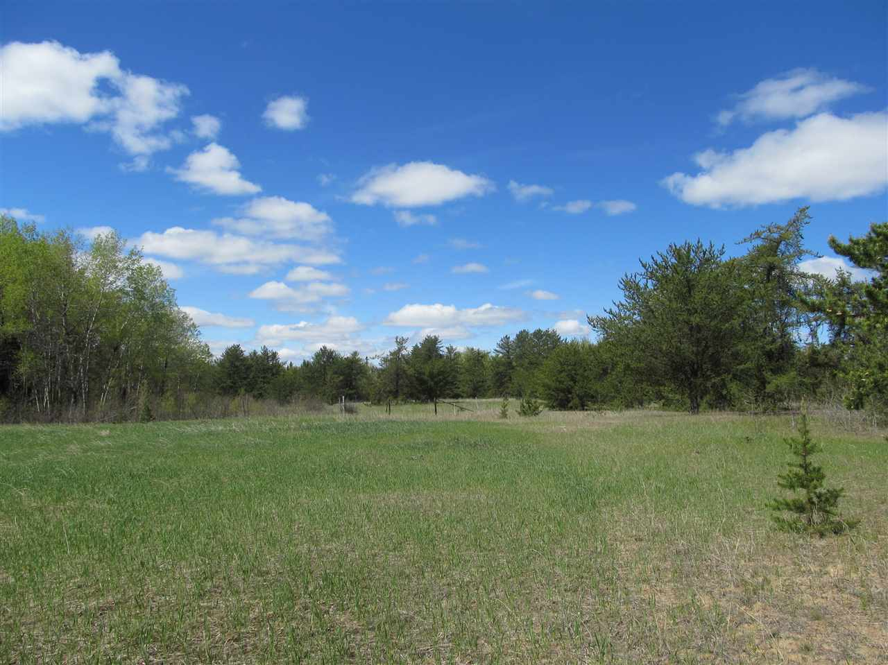 Photo 13: RR 225 North of Twp 590: Rural Thorhild County Rural Land/Vacant Lot for sale : MLS® # E4065164