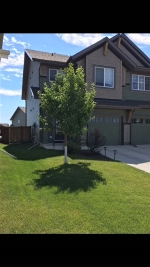 Main Photo: 5513 CRABAPPLE Loop SW in Edmonton: Zone 53 House Half Duplex for sale : MLS® # E4074563