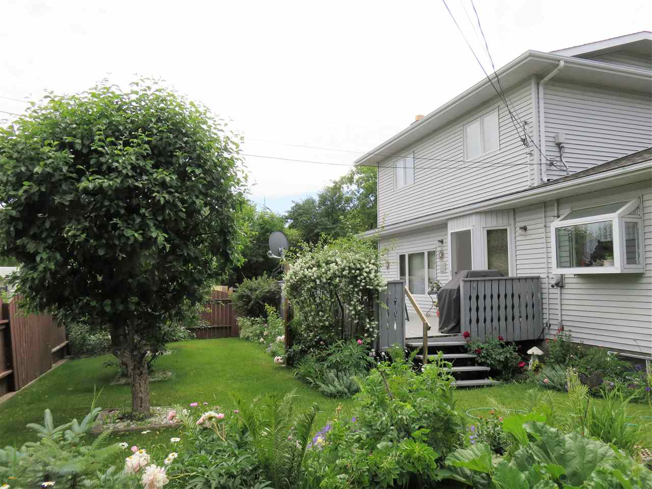 Here is a full view of the huge backyard & rear of the house! Along with the Apple Tree & Cherry Trees too! :)