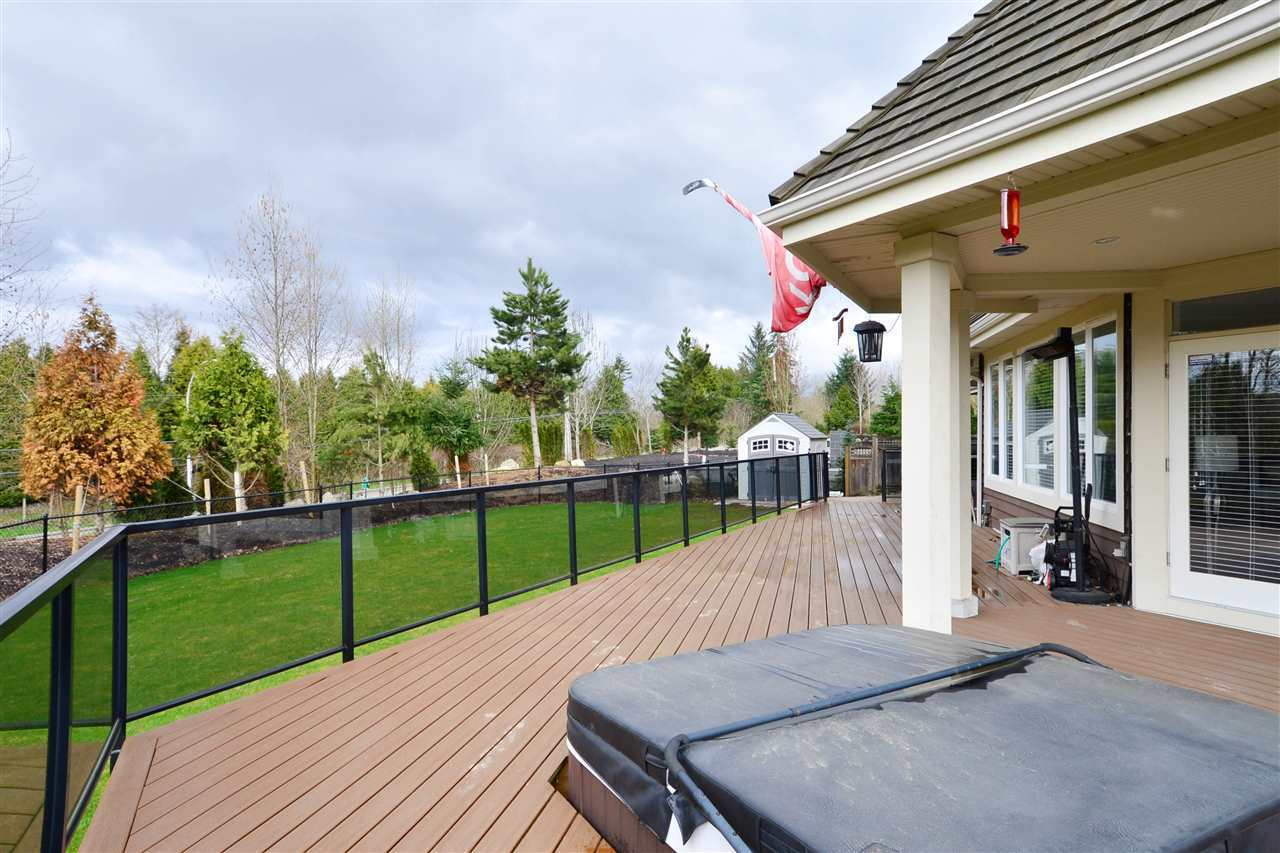 "Photo 19: Photos: 3148 162 Street in Surrey: Grandview Surrey House for sale in ""Morgan Acres"" (South Surrey White Rock)  : MLS® # R2204831"