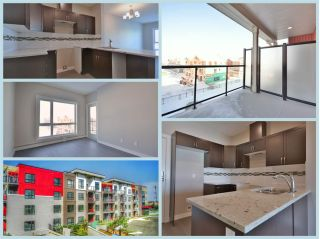 Main Photo:  in Edmonton: Zone 27 Condo for sale : MLS® # E4097380