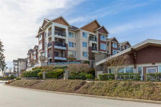 "Main Photo: 229 19677 MEADOW GARDENS Way in Pitt Meadows: North Meadows PI Condo for sale in ""FAIRWAYS"" : MLS® # R2247963"