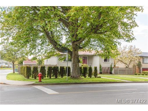 Photo 18: 1849 Gonzales Avenue in VICTORIA: Vi Fairfield East Single Family Detached for sale (Victoria)  : MLS(r) # 377422