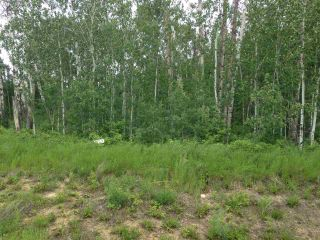 Main Photo: 9 Lake Country Estates: Rural Athabasca County Rural Land/Vacant Lot for sale : MLS(r) # E4069751