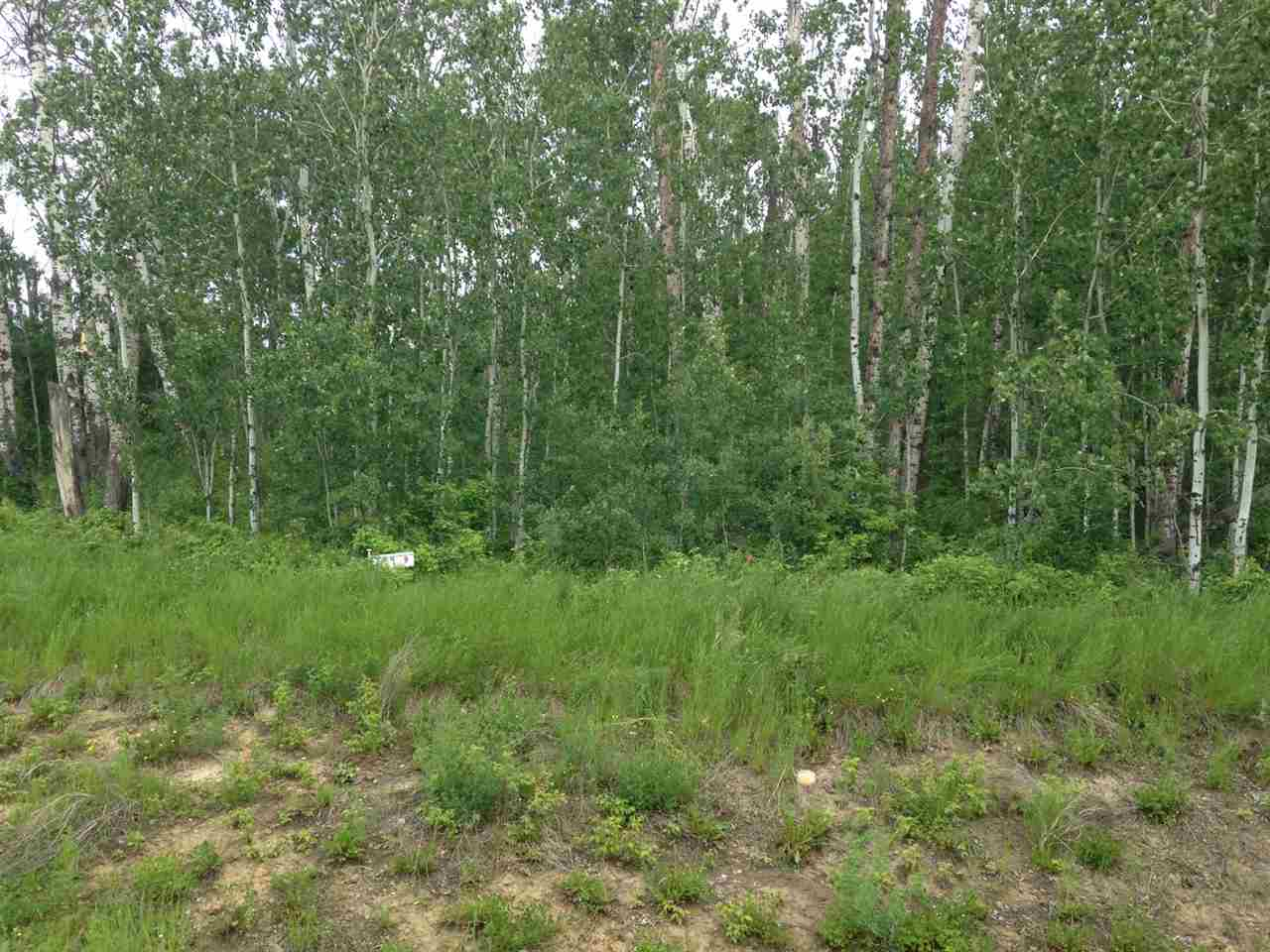Main Photo: 9 Lake Country Estates: Rural Athabasca County Rural Land/Vacant Lot for sale : MLS® # E4069751