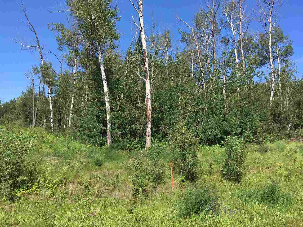 Main Photo: 9 Lake Country Estates: Rural Athabasca County Rural Land/Vacant Lot for sale : MLS®# E4069751