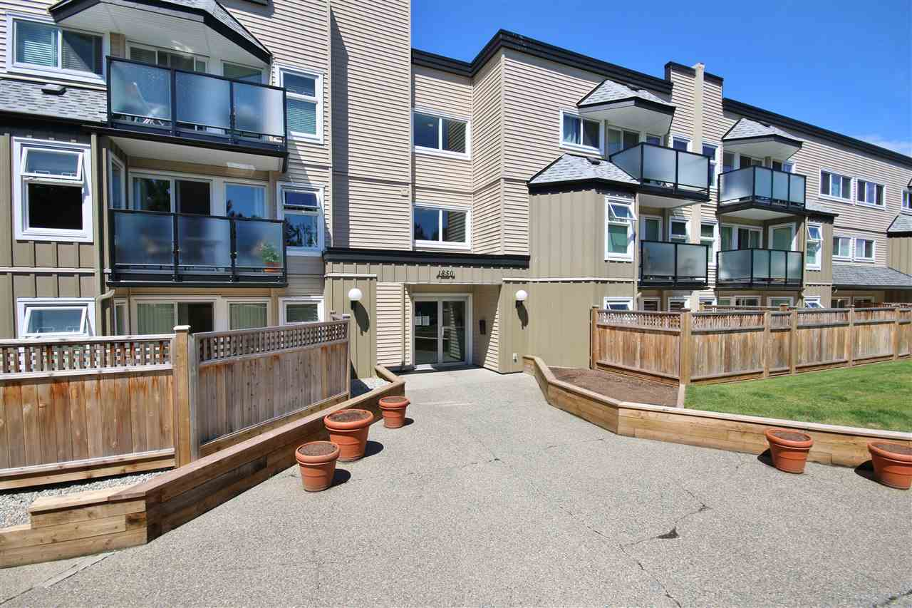 Main Photo: 211 1850 E SOUTHMERE Crescent in Surrey: Sunnyside Park Surrey Condo for sale (South Surrey White Rock)  : MLS(r) # R2178938
