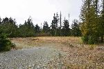 Main Photo: LOTS C D E KING Road in Gibsons: Gibsons & Area Home for sale (Sunshine Coast)  : MLS®# R2212343