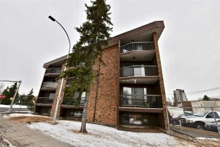 Main Photo: 205 11040 82 Street in Edmonton: Zone 09 Condo for sale : MLS® # E4089913