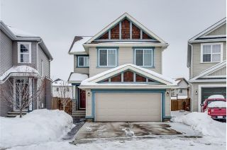 Main Photo: 68 COPPERPOND Mews SE in Calgary: Copperfield House for sale : MLS® # C4166149