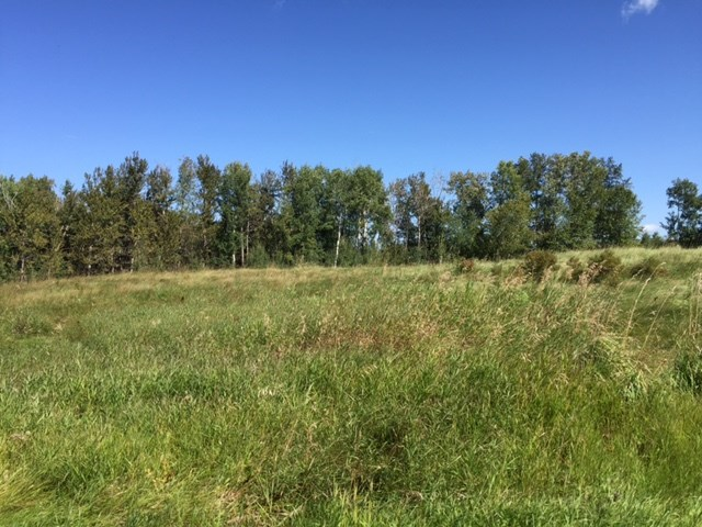 Main Photo: 53311 Range Road 30: Rural Parkland County Rural Land/Vacant Lot for sale : MLS® # E4078825