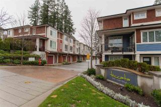 "Main Photo: 47 2929 156 Street in Surrey: Grandview Surrey Townhouse for sale in ""Toccata"" (South Surrey White Rock)  : MLS® # R2226226"