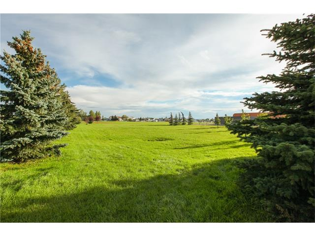 Photo 33: 8 ERIN MEADOWS Court SE in Calgary: Erin Woods House for sale : MLS(r) # C4078378