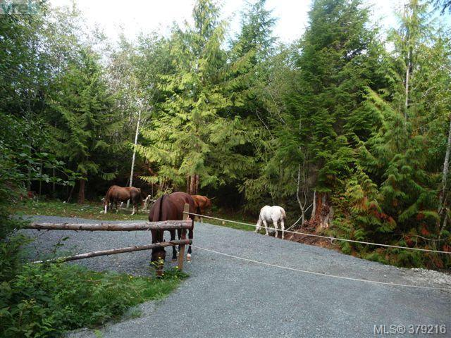 Main Photo: LOT A West Coast Road in SHIRLEY: Sk Sheringham Pnt Land for sale (Sooke)  : MLS® # 379216