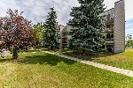 Main Photo: 207 9810 178 Street in Edmonton: Zone 20 Condo for sale : MLS® # E4072372