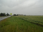 Main Photo: Part of NE-32-54-24-W4: Rural Sturgeon County Rural Land/Vacant Lot for sale : MLS® # E4078765