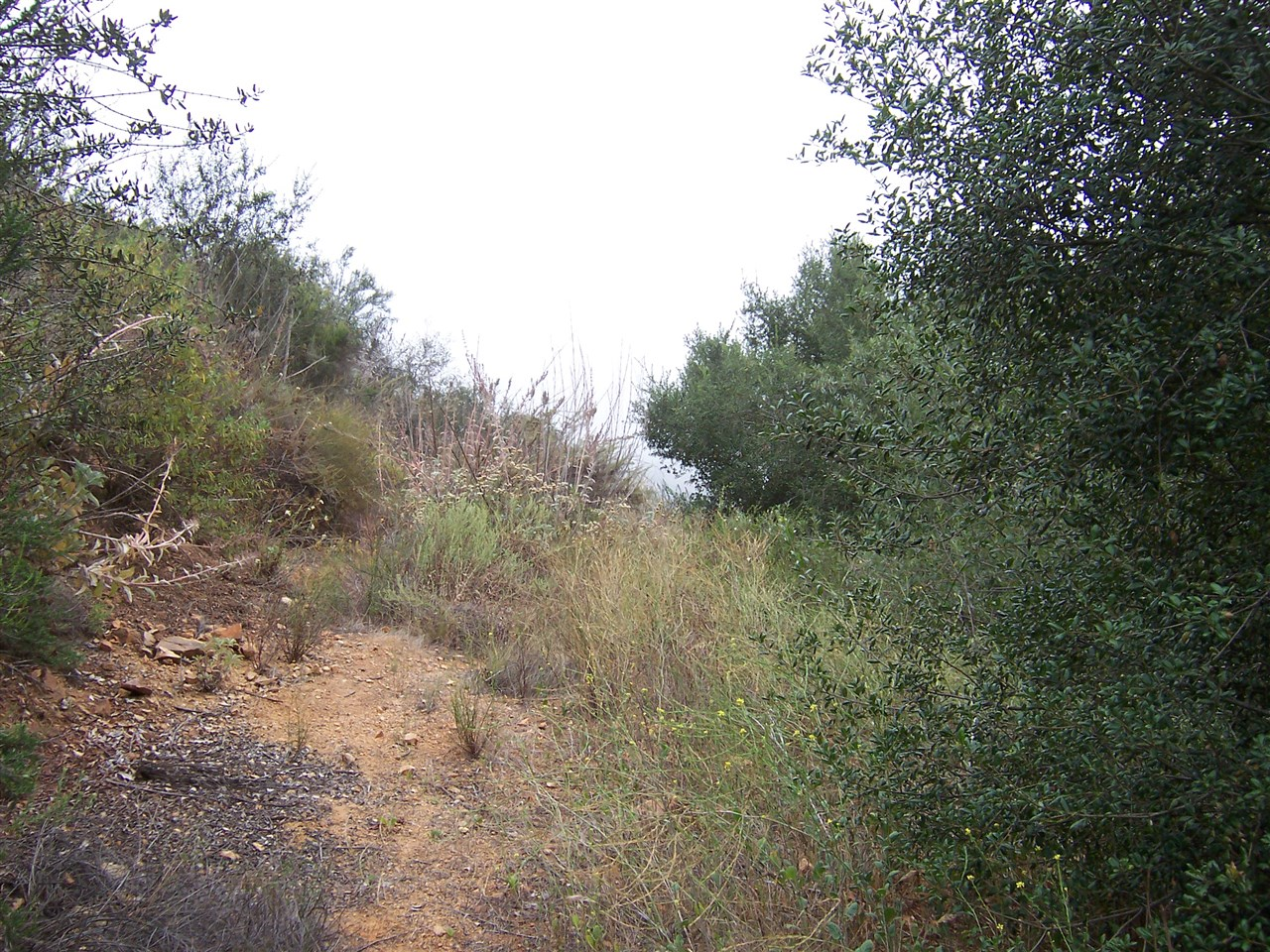 Main Photo: FALLBROOK Property for sale: 1015 RICE  CANYON